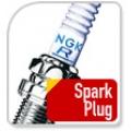 V239 Spark plug